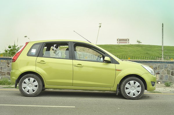 Ford Cars In India Prices And Variants From Ikon To Endeavour