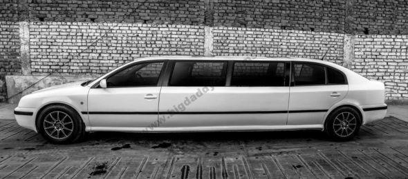 Skoda Octy Royale Limousine Profile Photo