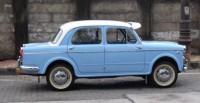 Fiat 1100 Profile