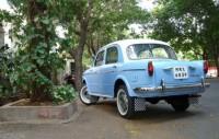 Fiat 1100 Rear