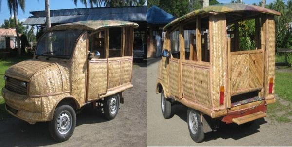 Coconut Palm Car