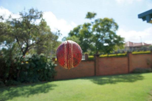 Flying cricket ball