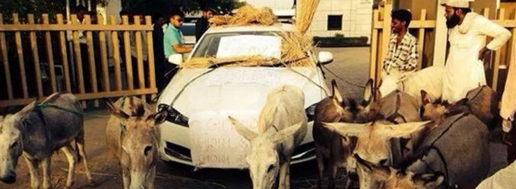 donkeys-tow-jaguar-slider