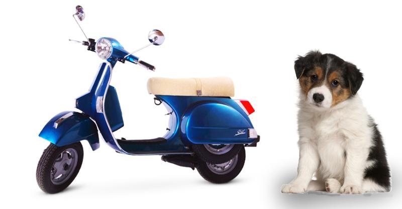 Goodbye LML: 10 LML scooters & motorcycles you've forgotten