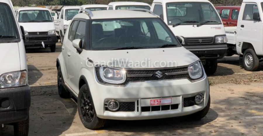 2019 Upcoming Maruti Suzuki Ignis revealed in spy pictures before launch