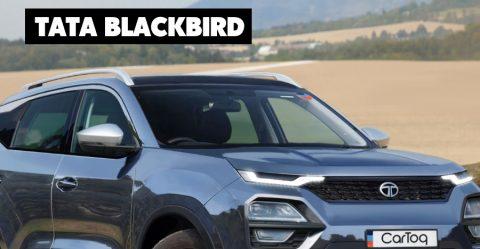 Tta Blackbird Fb