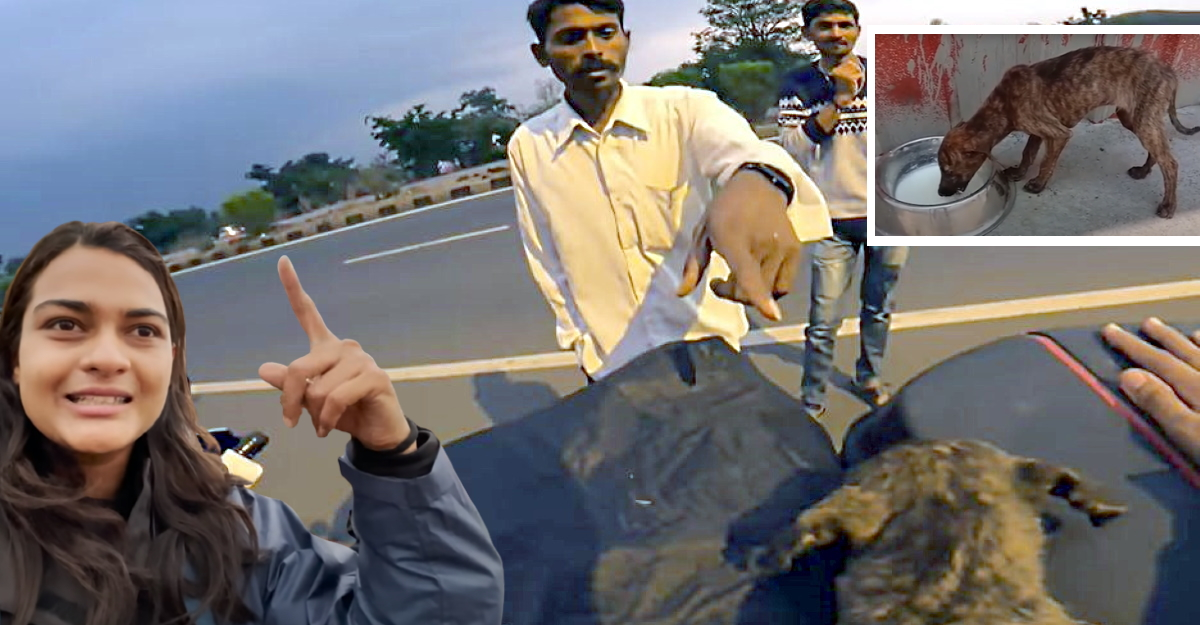 Lady KTM rider trying to save an injured pup gets harassed by drunk men