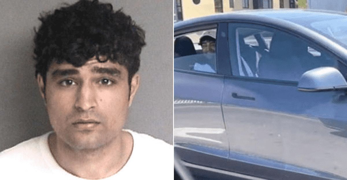 """Indian-origin man repeats Tesla auto-pilot stunt after getting arrested for it: Says """"I'm very rich"""""""