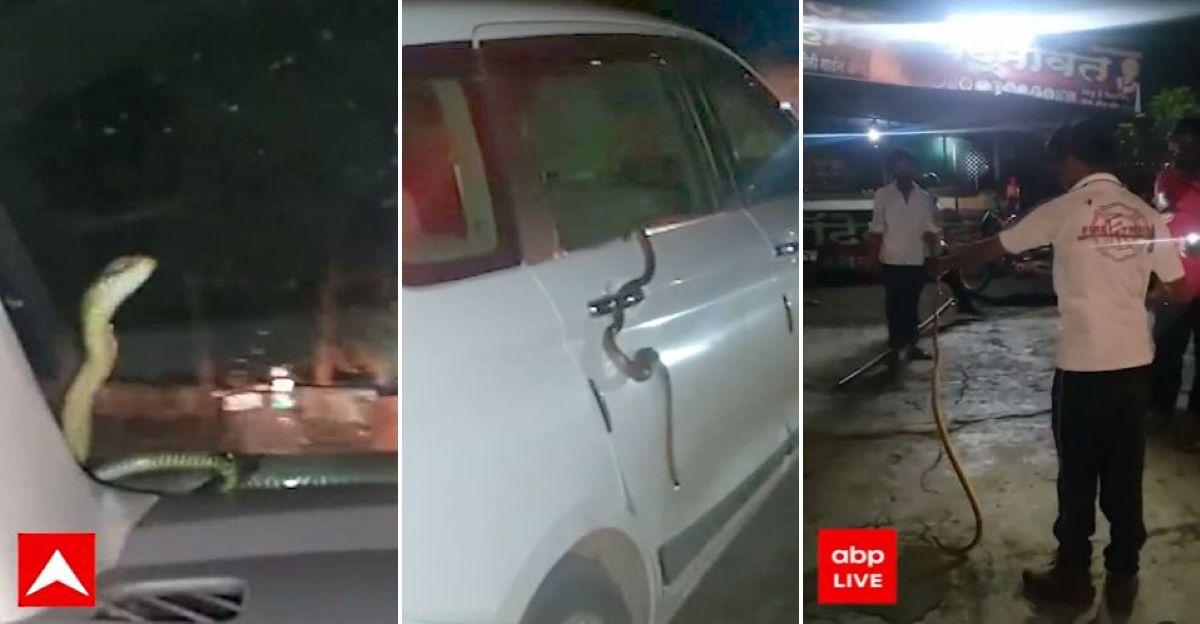 Nashik man finds snake on his Maruti Ertiga's windshield while driving: Snake rescued