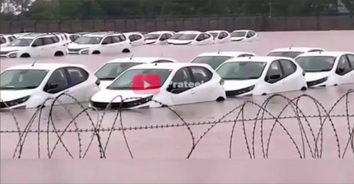 Dozens of Tata Safari SUVs & Altroz premium hatchbacks drown in flood-hit stockyard