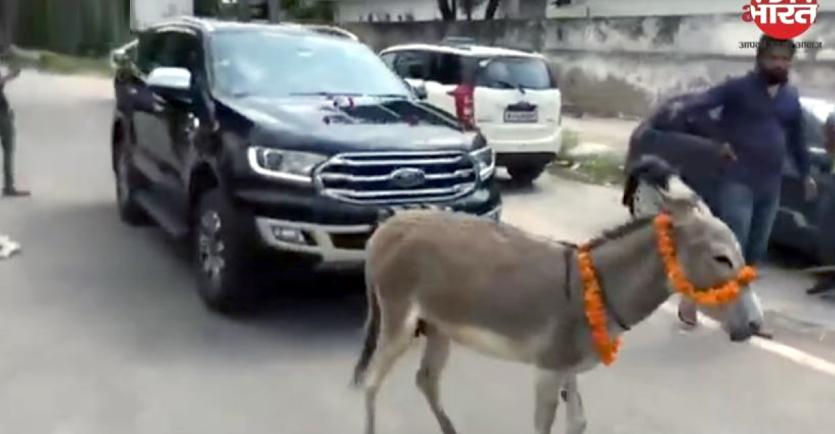 Donkey pulls Ford Endeavour to dealership after faulty car delivered for second time