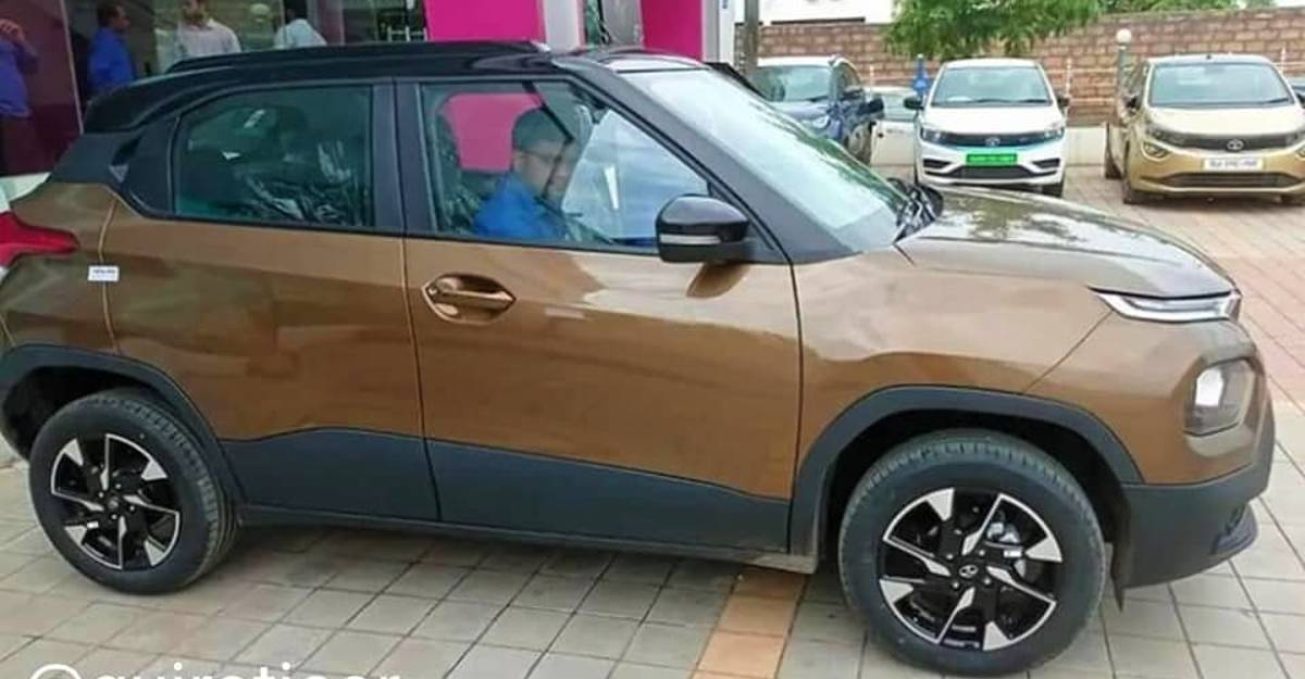 Tata Punch micro SUV: Clear new pictures reveal all